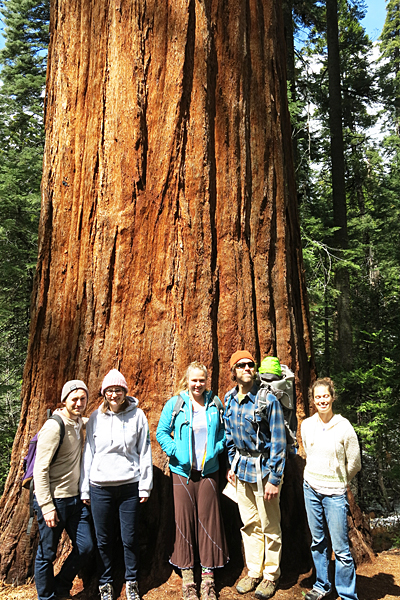 The gang by a tree in Calaveras Big Trees State Park.